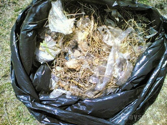 Gutter Waste Removal